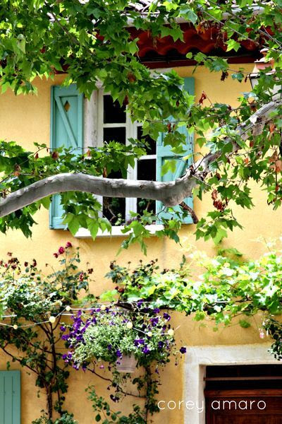 I so love this photo (shot in Provence, France).... the pretty yellow house paint, the green shutters,the trees, ---so lovely!