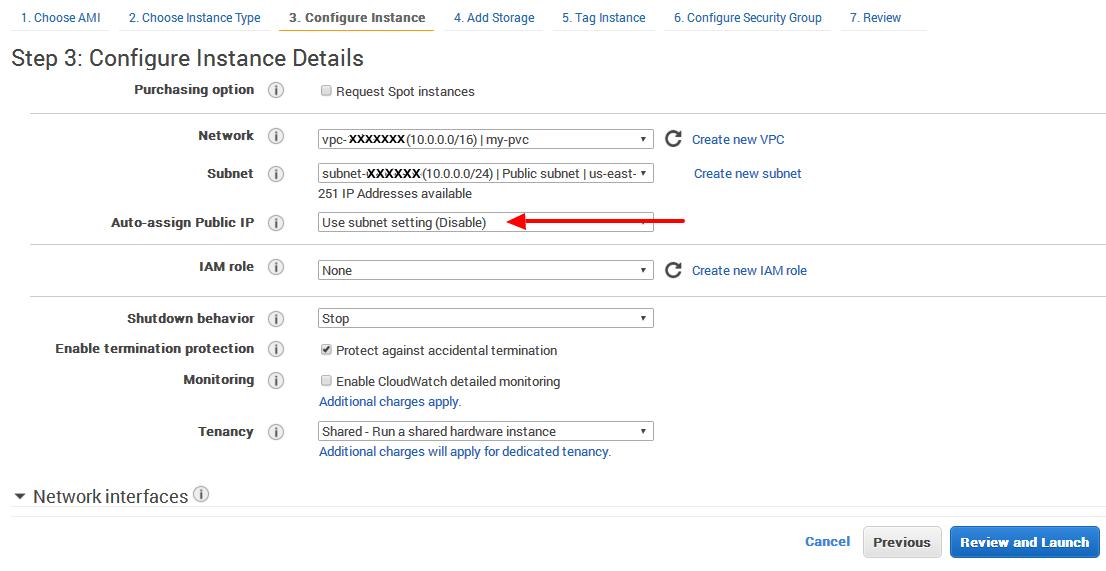 EC2 instance has no public DNS