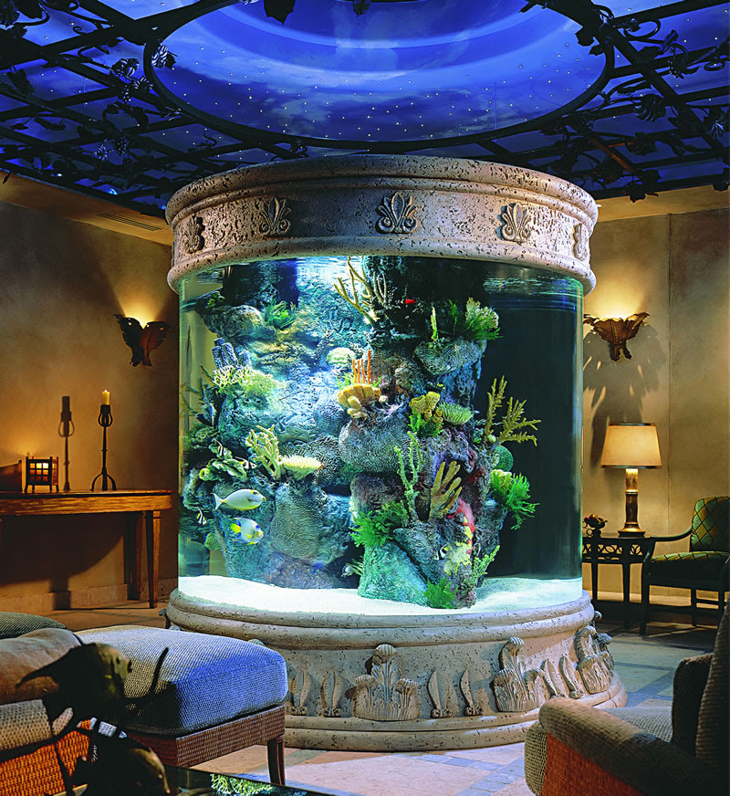 Home Furniture Modern Beautiful Home Aquarium