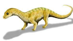 Bebé de dinosaurio Massospondylus