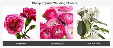 Average Cost of Wedding Flowers   ValuePenguin