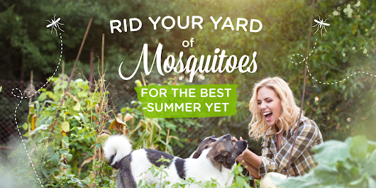 5 Ways to Get Rid of Mosquitoes in Your Yard « Wondercide Blog