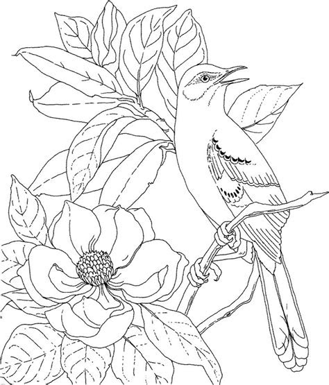 drawing pictures   printable coloring page
