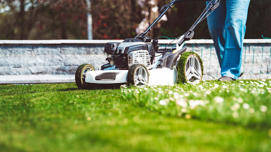 How to Mow a Lawn, and When: Odds Are, You're Doing It All Wrong