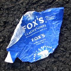 Fox Droppings