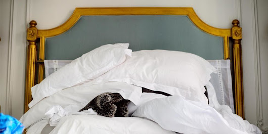 5 Secrets to Making a Bed Like a Hotel Housekeeper