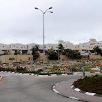 מי יבנה, יבנה בית, צפונית לתל־אביב - ynet ידיעות אחרונות