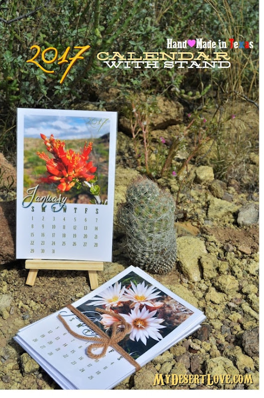 Handmade Photo Desk Calendar 2017 Cactus by MyDesertLoveDesigns