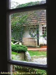 bc - window 05