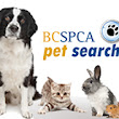 Email - Animals and the Environment - The BC SPCA