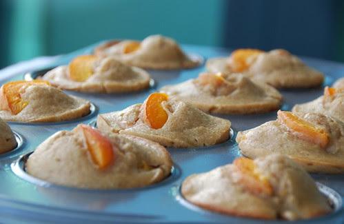 apricot muffins tin angle