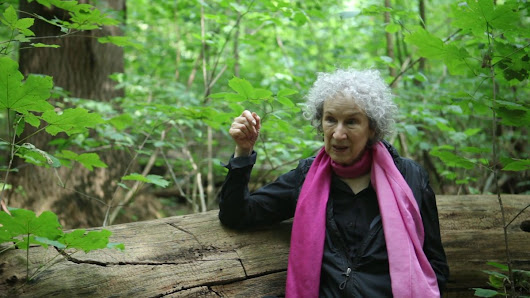 You can't read Margaret Atwood's next book until 2114