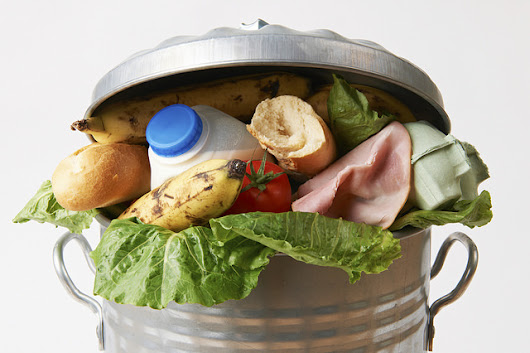 How to stop wasting food and start saving money!