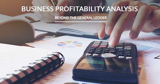 Business Profitability Analysis Beyond the General Ledger