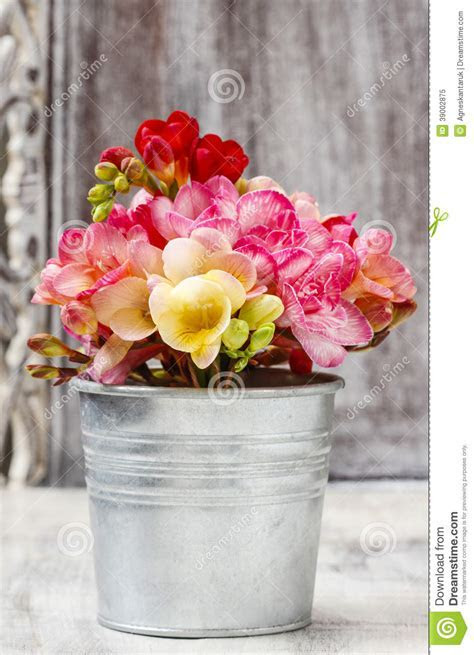 Bouquet Of Colorful Freesia Flowers Stock Image   Image