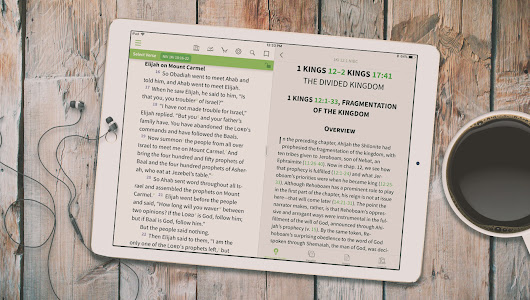 Look Inside: New Interpreter's Bible Commentary - Olive Tree Blog