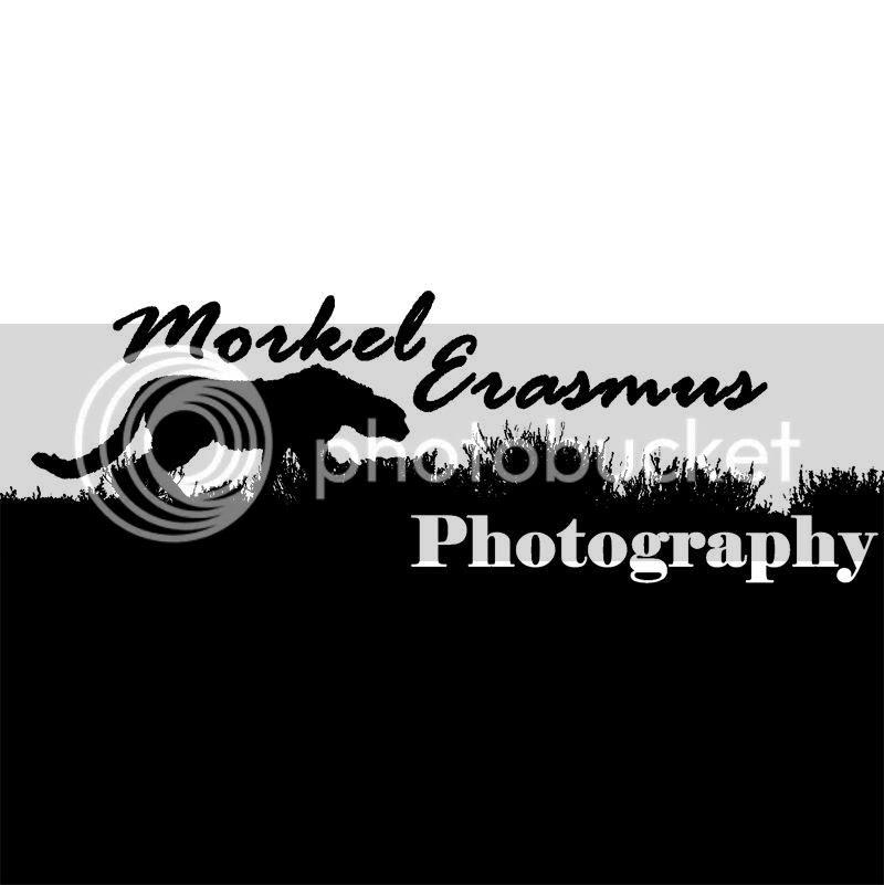 photo logo1.jpg