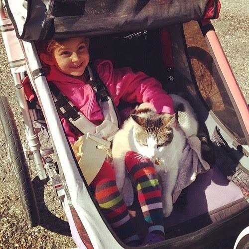 Wink is her copilot
