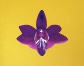 Orchid no.4 / postcard / golden yellow