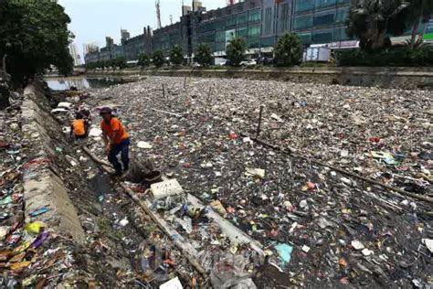 contoh limbah rumah tangga duniapelajarcom