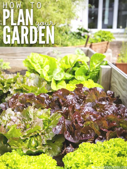 How to Plan You Garden (the easy way)