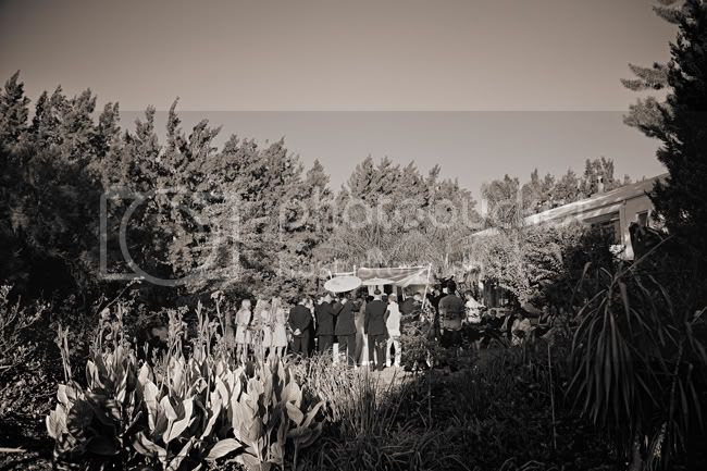 http://i892.photobucket.com/albums/ac125/lovemademedoit/PandS_FarmWedding_029.jpg?t=1303228922