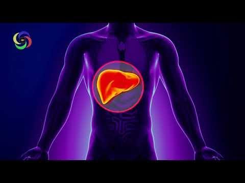 Music Frequency of Liver 317.83 Hz Binaural   Monaural - Pure - Organ - Liver