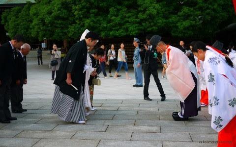 Nhật Bản, Tokyo, tặng quà, lịch sự, mặt trời mọc, hoa anh đào