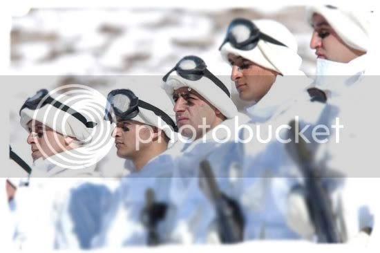 Türk Silahlı Kuvvetleri ve Muhalefet