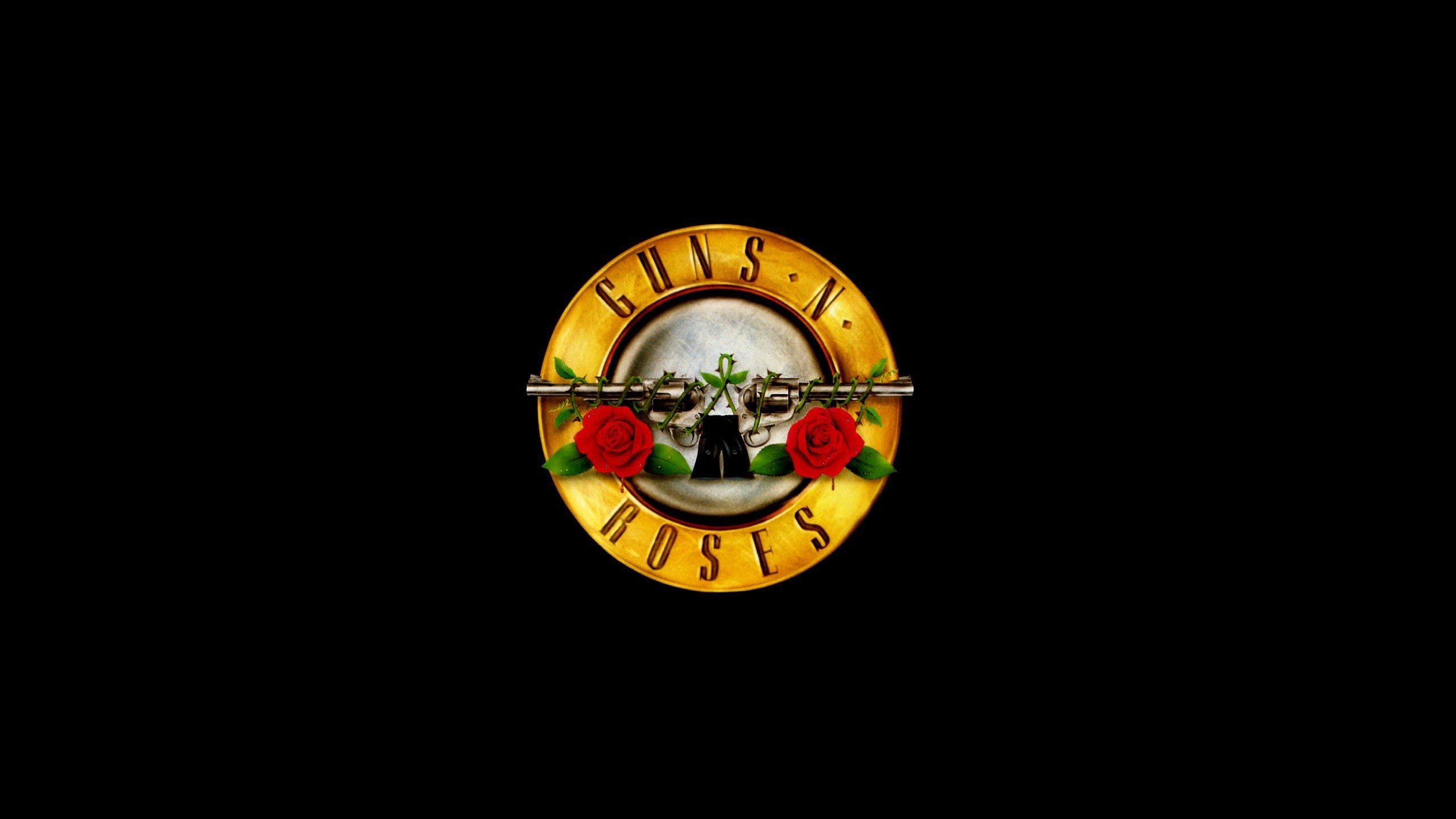 Guns N Roses Wallpapers 70 Images