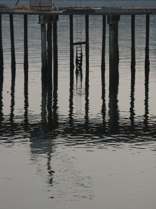 a ladder on a dock with pilings and reflections, Hydaburg, Alaska
