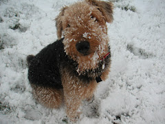 Goofy snow girl