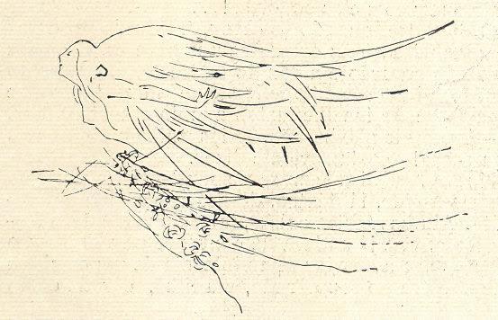 Ilustração Portugueza, No. 463, January 4 1915 - 2a
