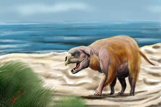 Savage Cryptids of North America: The Montauk Monster!