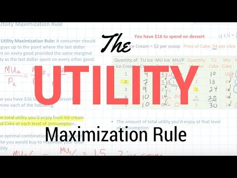 Marginal Utility Video (Jason Welker)
