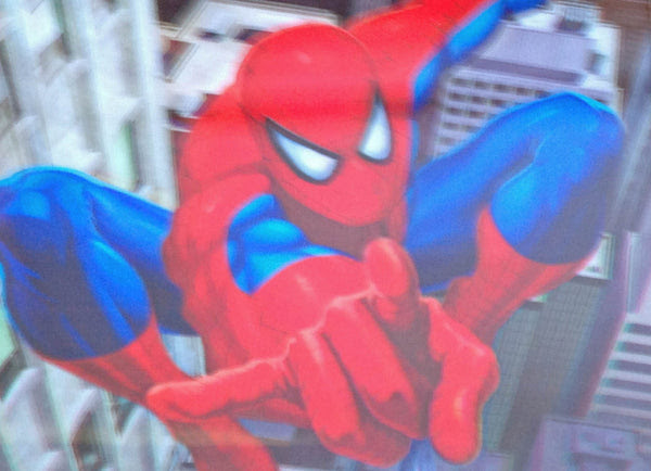Mis 17 Spiderman 3d Picture Free Shipping 3dddpictures Com