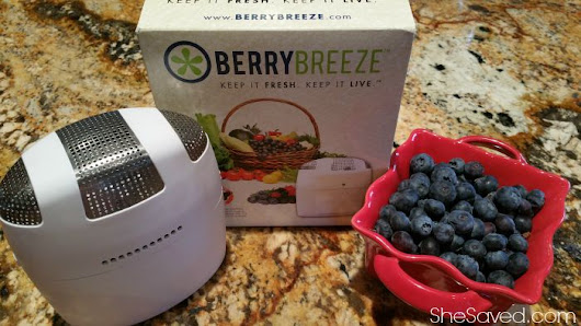 BerryBreeze Keeps Your Fridge (and Foods!) FRESH! - SheSaved®