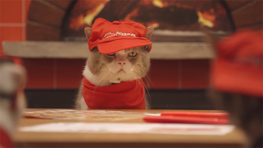 It Looks Like Pizza Hut in Japan Is Now Totally Being Run by Cats