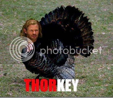 27ThorMemethorkey