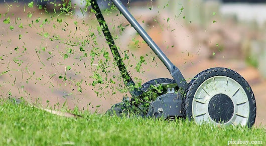 Why Landscaping and Lawn Care Services are Important - E Friends