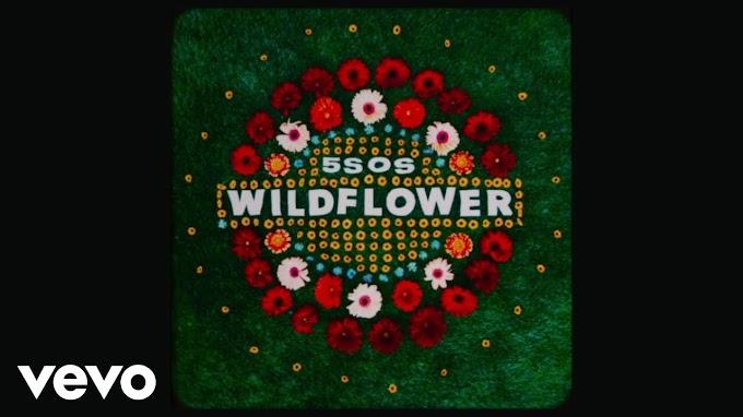 5 Seconds of Summer - Wildflower song lyrics