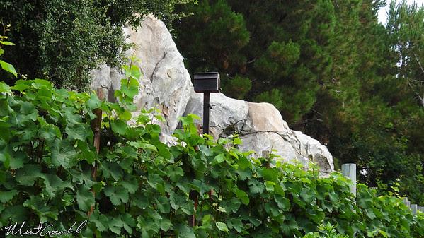 Disneyland Resort, Disney California Adventure, Winery, Wine, Grapes
