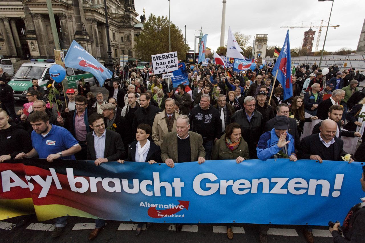 AfD Supporters (Carsten Koall/Getty Images)
