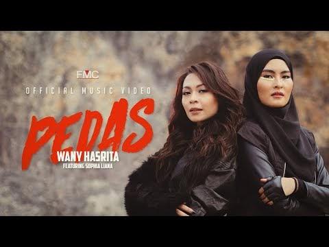 LIRIK LAGU WANY HASRITA | PEDAS (FEAT SOPHIA LIANA) Official Music Video