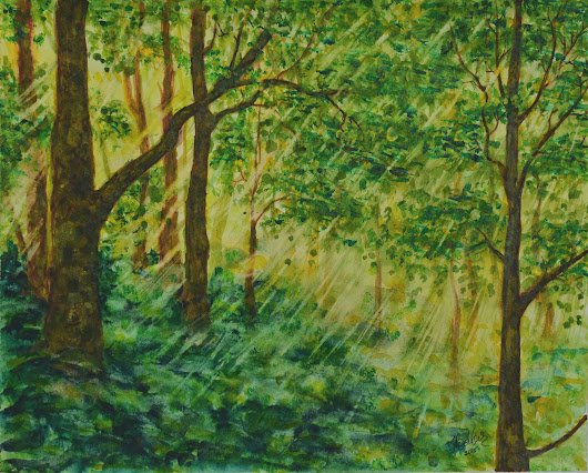 Sun Kissed Forest - Ingrida Gallery