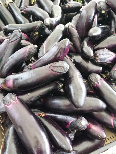 Thao's Farmers Market stand - Eggplants