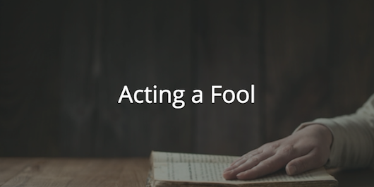 Proverbs 26: Acting a Fool | Before The Cross