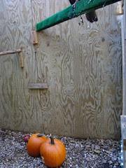 Earls Pumpkins