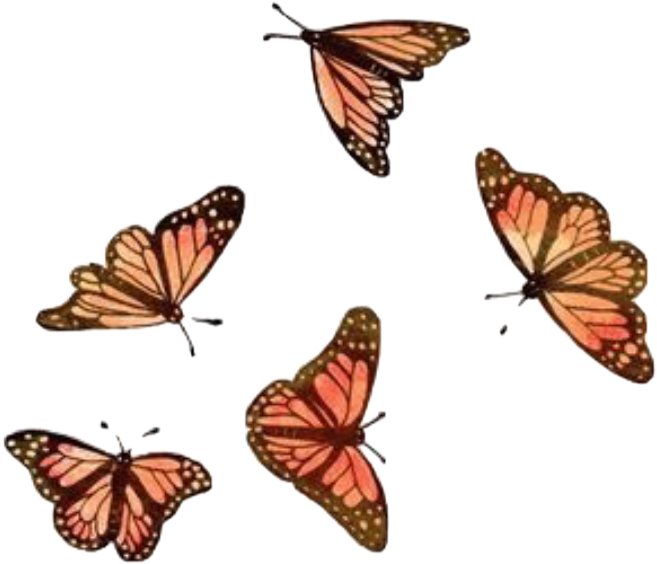 Of the new butterfly themed products that are making their debut this month. Get Inspired For Mobile Iphone Flower Butterfly Monarch ...
