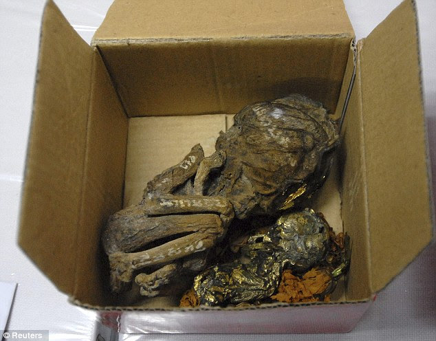 Human remains: Two of the six foetuses wrapped in gold leaf which were seized by police in Bangkok, Thailand. A British man has been arrested